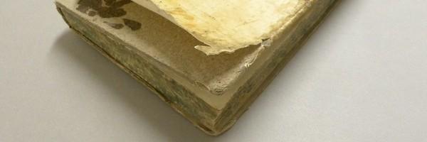 Coperte in pergamena